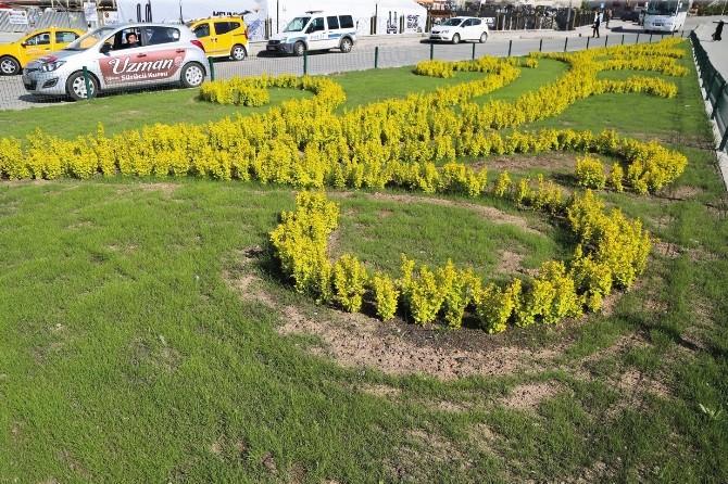 Büyükşehir Belediyesi 500 Bin Adet Çiçek Dikiyor, Erzurum Rengarenk Oluyor