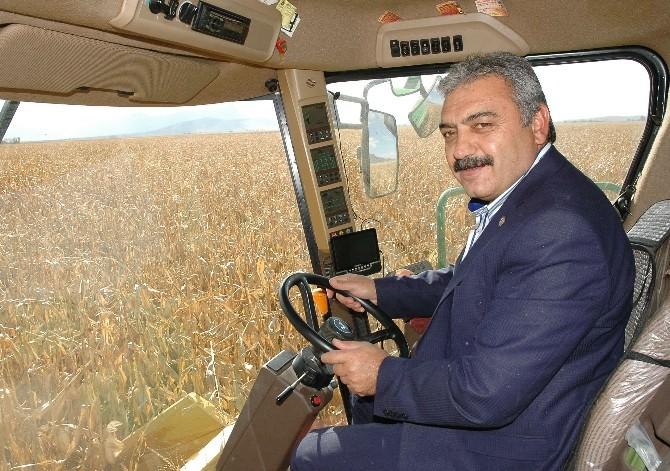 Ziraat Odası Başkanı Muğlu'dan Çiftçilere Hasat Öncesi Uyarı