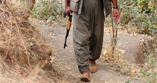 Cizre'de bir terörist teslim oldu