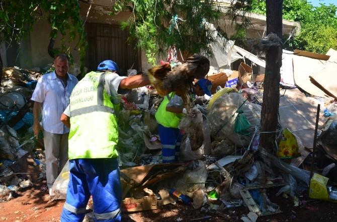 Çöp Ev Haline Gelen Kullanılmayan Ev, Belediye Tarafından Temizlendi