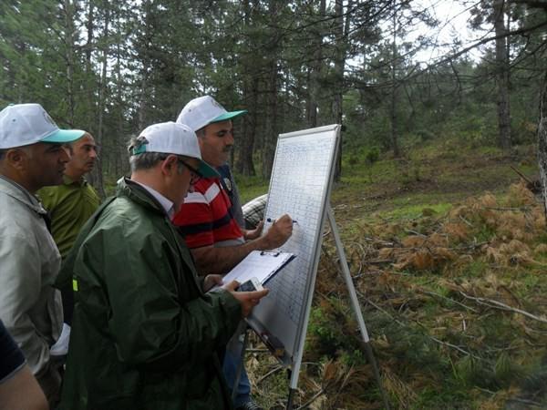 Ormanlara Sağlık Karnesi