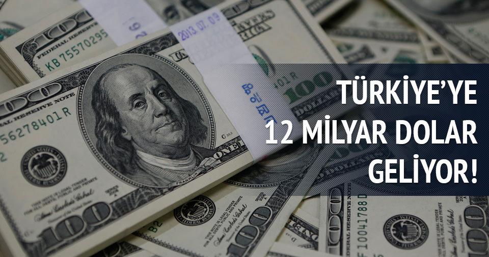 Türkiye'ye 12 milyar dolar geliyor