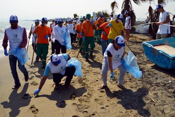 Avrupalı Öğrenciler, Deniz Kaplumbağalarının Üreme Alanlarında Temizlik Yaptı