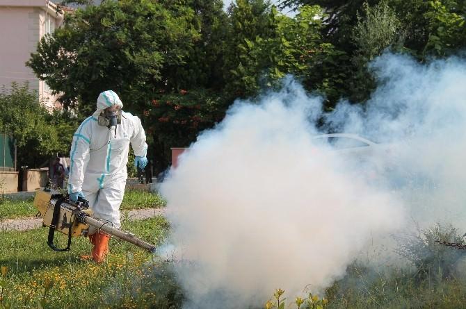Edirne Belediye Başkan Yardımcısı Tanrıkulu, Çeltik Üreticilerine Uyarılarda Bulundu