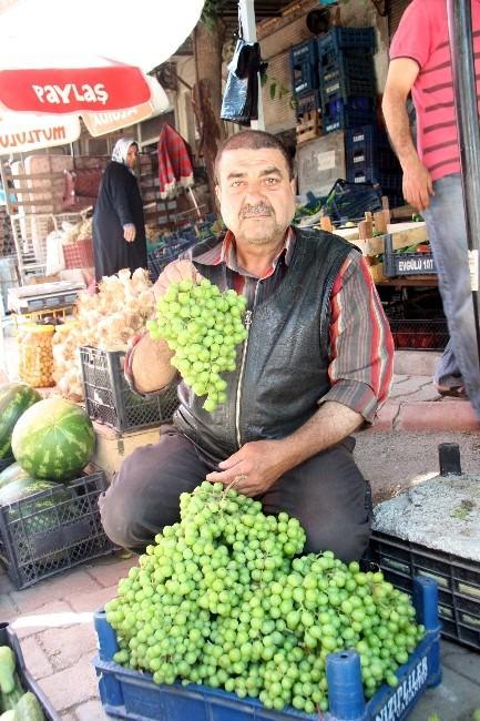 Kilis'te, Asma Koruğu Piyasada