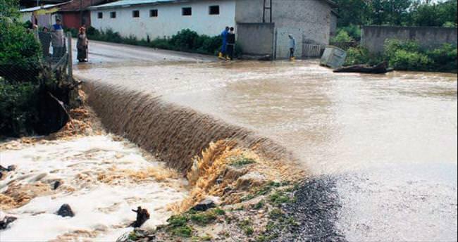 Aşırı yağış dereyi taşırdı 22 hayvan telef oldu