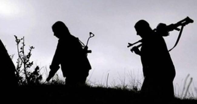 Şemdinli'de 2 terörist teslim oldu