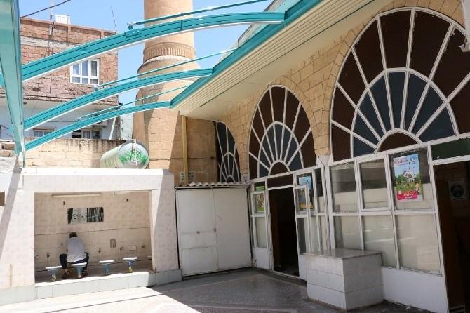 Camilere Yeni Düzenleme Haliliye Belediyesi'nden
