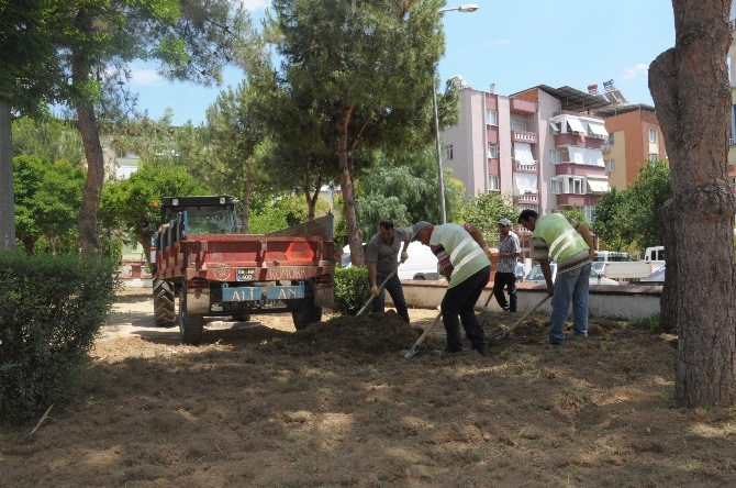 Nazilli'de Tahrip Olan Parklar Yeni Yüzüne Kavuşuyor