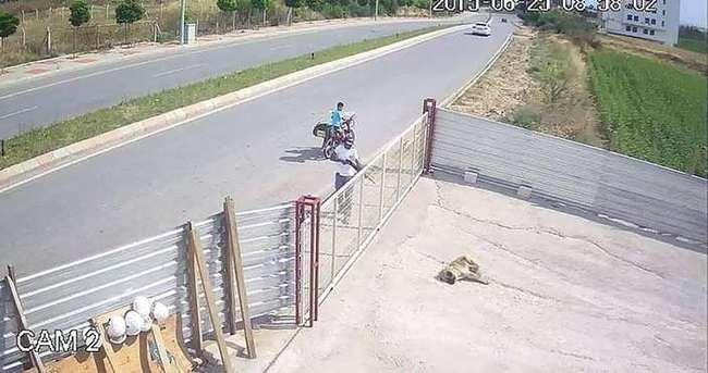 Köpeği pompalı tüfekle öldüren adam konuştu