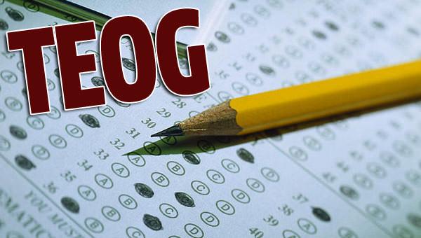 2015 TEOG YEP sınav sonuçları belli oldu - tıkla öğren - E-okul