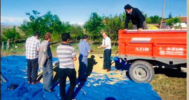 Kırıkkale'de arpa alımları başladı