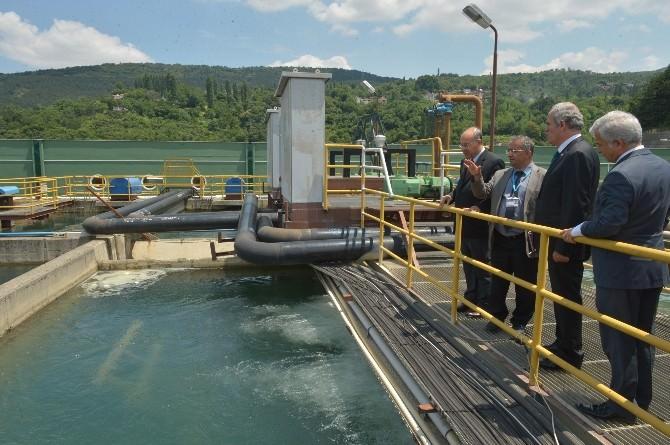 Bursa'da En Sağlıklı Su Çeşmeden İçilir