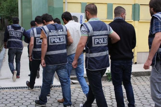Tokat'ta Bonzai Operasyonu: 9 Tutuklama