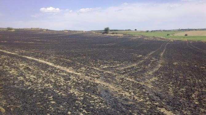 Tekirdağ'da Buğday Tarlasında Büyük Yangın