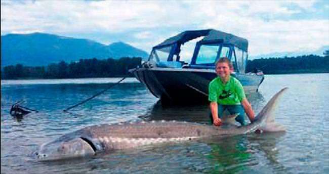 9 yaşındaki balıkçı 270 kiloluk balık tuttu