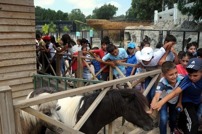 İştar Kursiyeri Çocuklar Hayvanat Bahçesini Gezdi