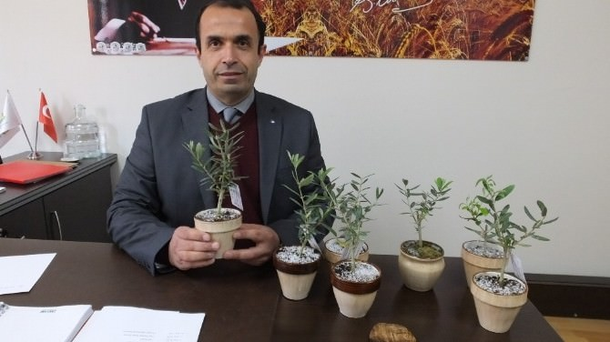 Burhaniye'de Biyolojik Mücadele Desteklemesi