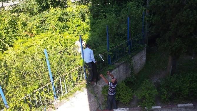 Kanala Düşen Köpek 2 Gün Sonra Kurtarıldı