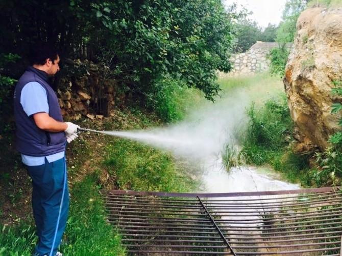 Kastamonu Belediyesi, Haşerelerle Mücadele Ediyor