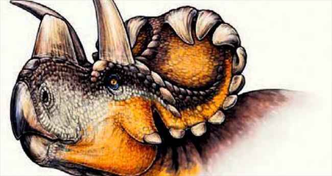 Dinozor ailesine boynuzlu yeni üye