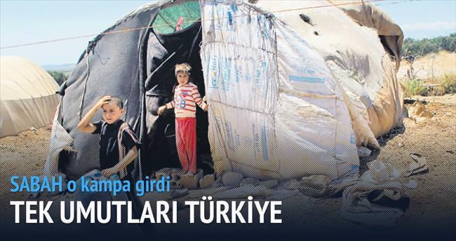 Tek umut Türkiye