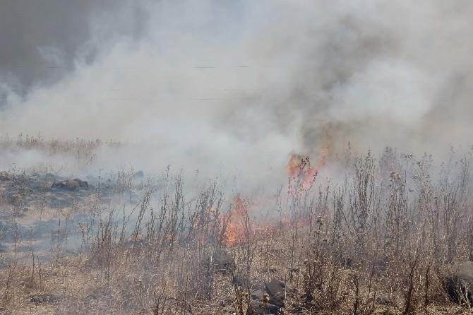 Diyarbakır'da Çıkan Anız Yangını Binadaki Vatandaşları Korkuttu