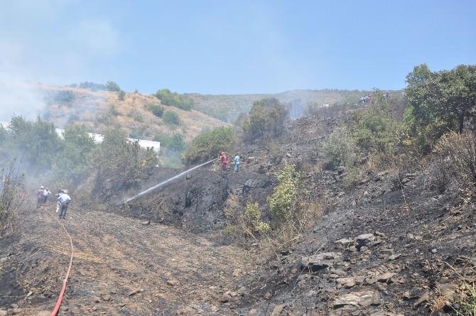 Gazipaşa'da Anız Yangını Korkuttu.