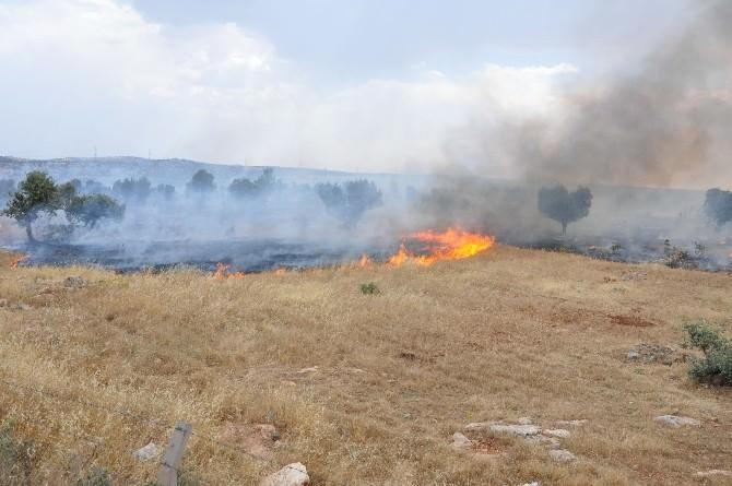 Dargeçit'te Korkutan Yangın
