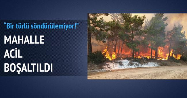 Mersin'de orman yangını, mahalle boşaltılıyor