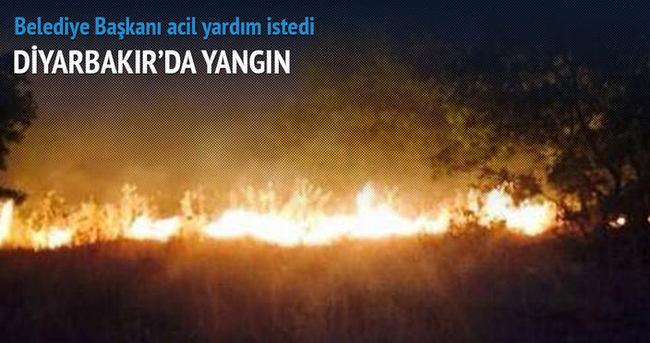 Diyarbakır'da büyük yangın!