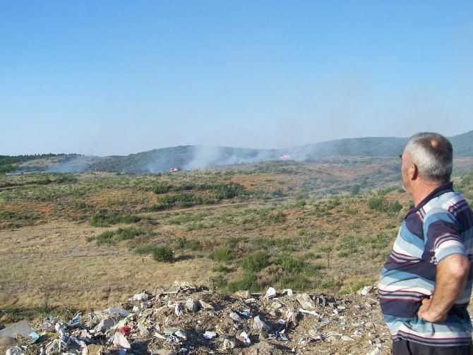 Beyşehir'de Çıkan Orman Yangını Söndürüldü