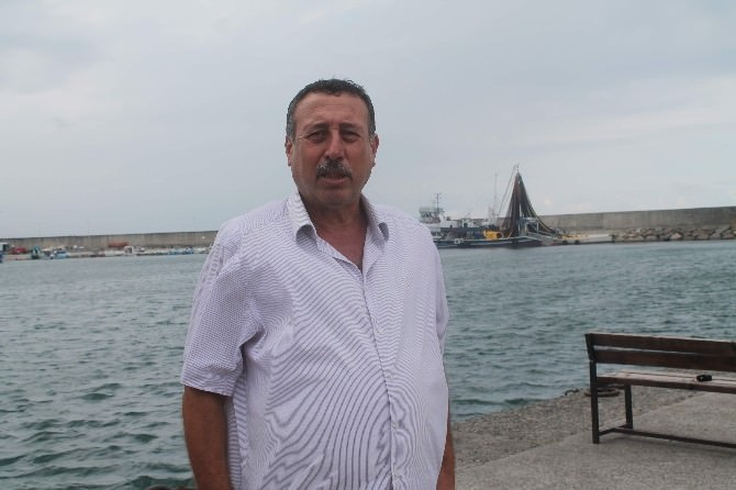 Palamut Sinop'ta Oltaya Takıldı, Trabzon'da Balıkçının Umudu Oldu