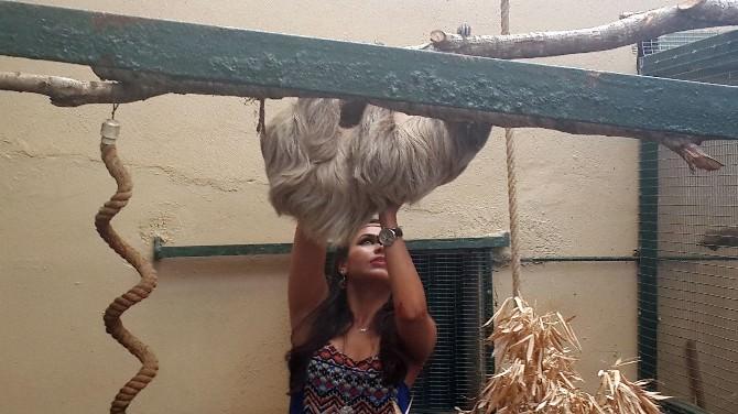 Hayvan Dostu Tuna Güzelyurt'a Tembel Hayvan Saldırdı