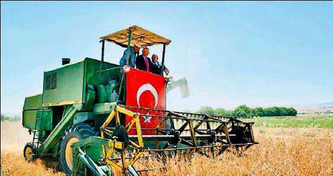 Haymana'da hasat bayramı