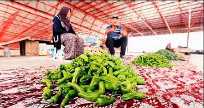 Köylü pazarı hem sağlıklı hem ucuz