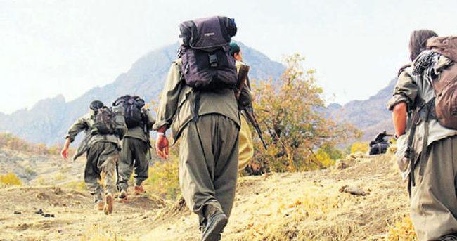 7 PKK'lı örgütten kaçarak teslim oldu