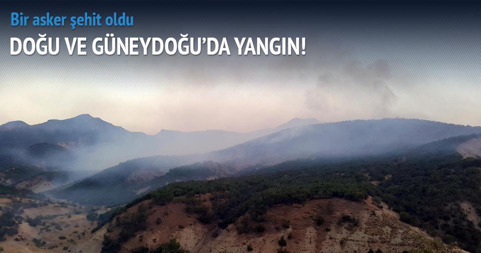 Güneydoğu'da orman yangınları: 1 asker şehit oldu