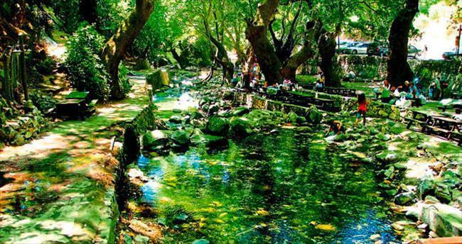 Ormanın, dağların ve denizin ortasında bir Yeşilyurt