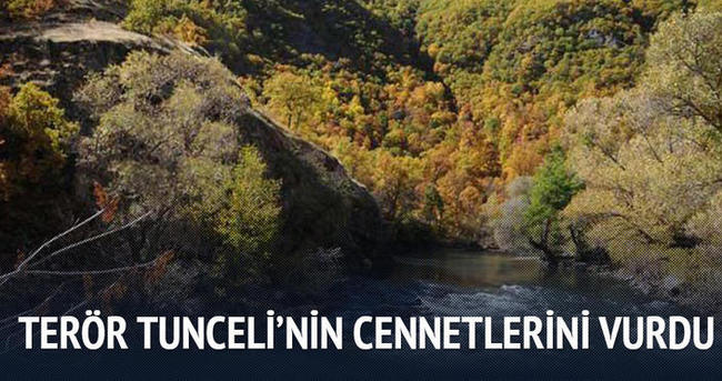 Terör Tunceli'nin cennetlerini de vurdu