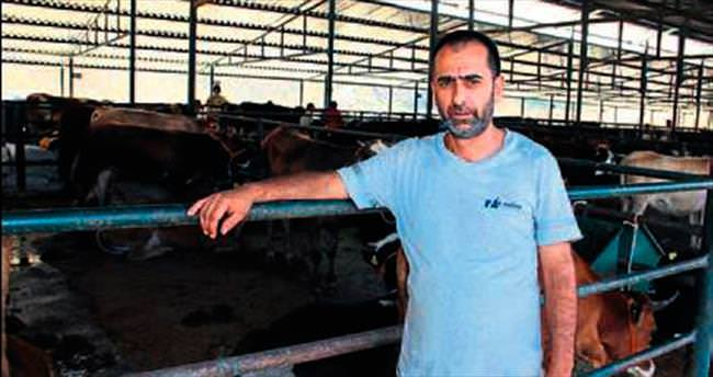 Hayvan pazarına bile zararları dokunuyor
