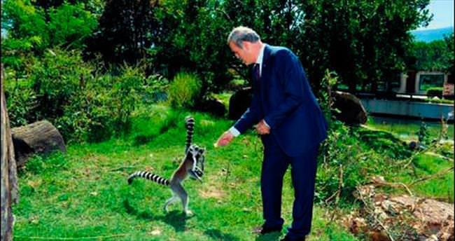 Bursa Hayvanat Bahçesi büyüyor
