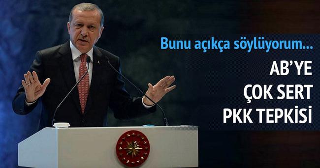 Erdoğan: Avrupa PKK'ya göz yumuyor