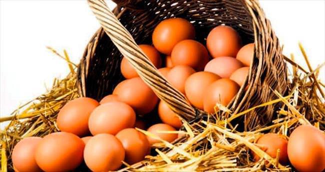 Köy yumurtasına standart geldi