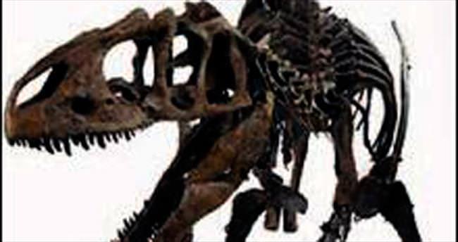 2.3 milyon liraya dinozor iskeleti