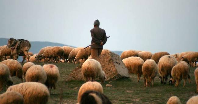 PKK'dan çobanlara tuzak!