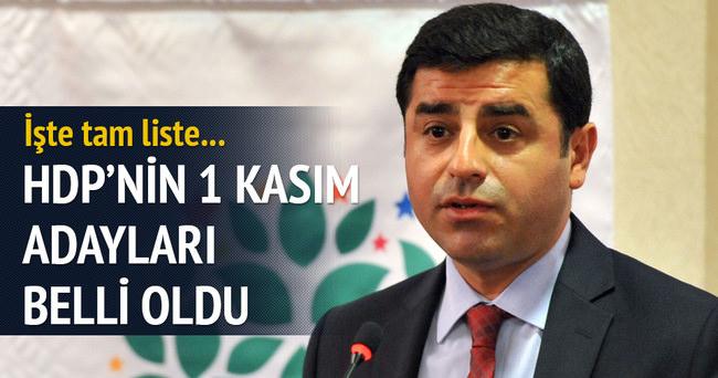 HDP'nin 1 Kasım seçimleri için milletvekili aday listesi
