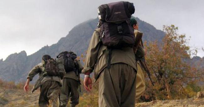 Tunceli'de üst düzey PKK'lılar öldürüldü