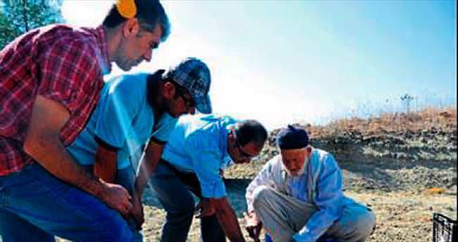 Kültür salebi ekimi başladı
