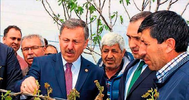 Manisalı çiftçilere 200 milyon lira